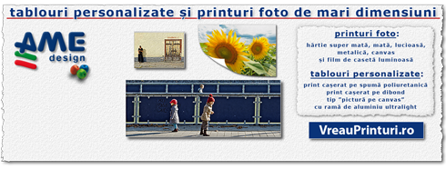 tablouri personalizate și printuri foto mari